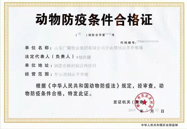 牙山黑绒山羊动物防疫条件合格证